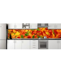 Glass Splashbacks 11