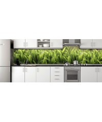 Glass Splashbacks 12