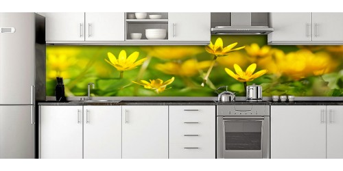 Glass Splashbacks 28