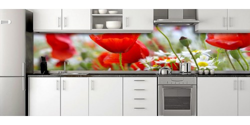 Glass Splashbacks 30
