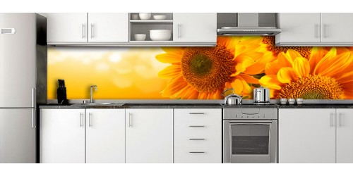 Glass Splashbacks 35