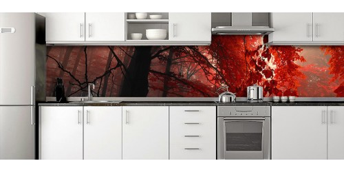 Glass Splashbacks 122