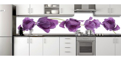 Glass Splashbacks 127