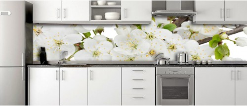 Glass Splashbacks 131