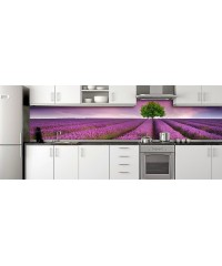 Glass Splashbacks 141