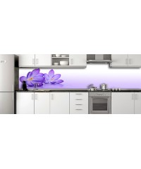 Glass Splashbacks 143