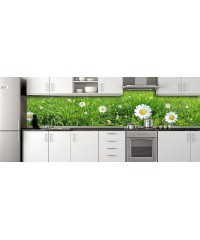 Glass Splashbacks 159