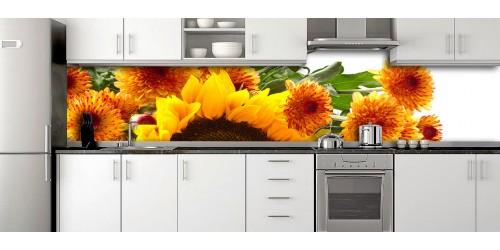 Glass Splashbacks 160