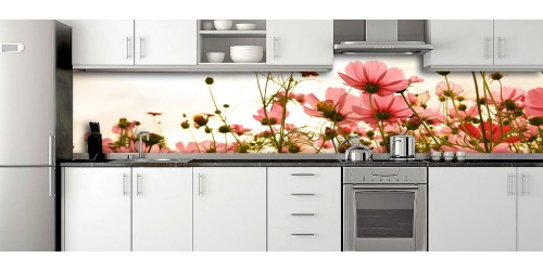 Glass Splashbacks 167