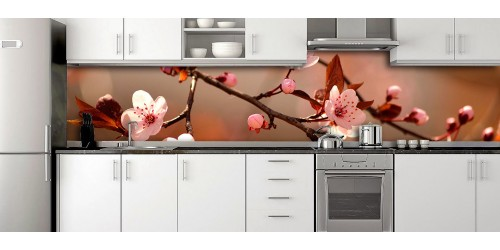 Glass Splashbacks 169