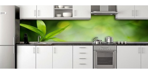 Glass Splashbacks 192