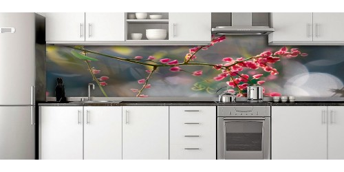 Glass Splashbacks 228