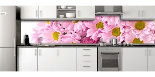 Glass Splashbacks 231