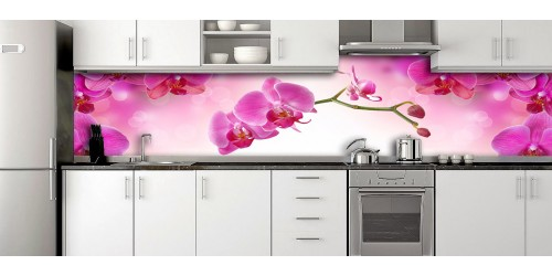 Glass Splashbacks 232