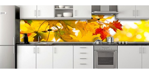 Glass Splashbacks 236