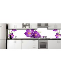 Glass Splashbacks 237