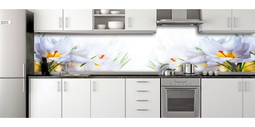 Glass Splashbacks 238