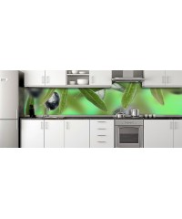 Glass Splashbacks 249