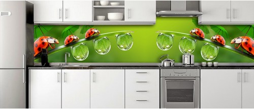 Glass Splashbacks 281