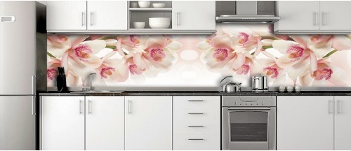 Glass Splashbacks 287