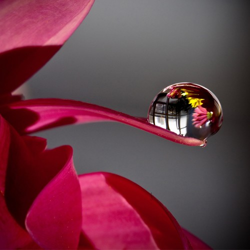 Декоративно стъкло за гръб на котлони 18